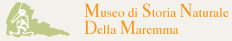 logo Museo di storia naturale della maremma