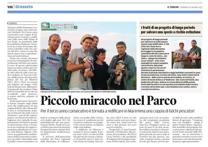 Falco pescatore: successo riproduttivo anche per il 2013!